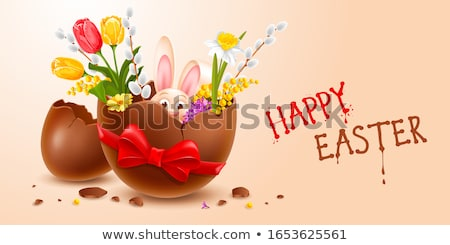 Flower in a broken eggshell Stock photo © bbbar