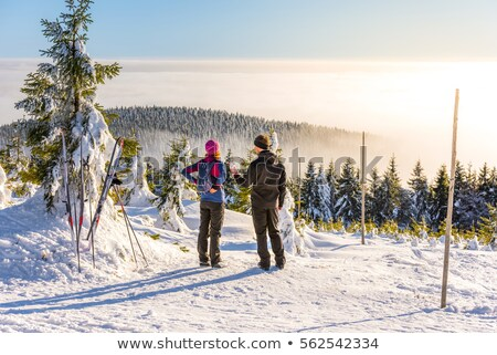 orlicke mountains in winter at sunset czech republic stock photo © phbcz
