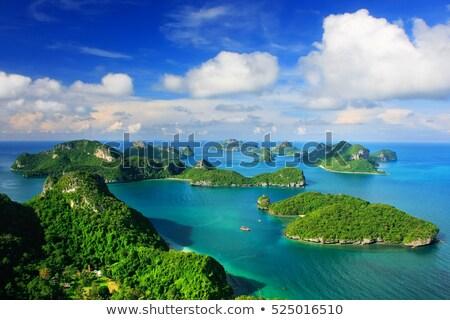 groep · mariene · wal · eiland · natuur · dier - stockfoto © smithore