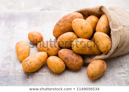 Russet potatoes Stock photo © fotogal