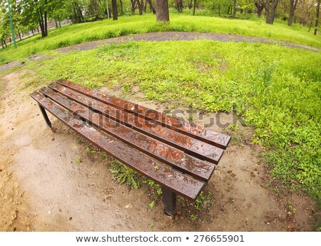 Wide Angle View Curving Row of Benches Stock photo © Qingwa