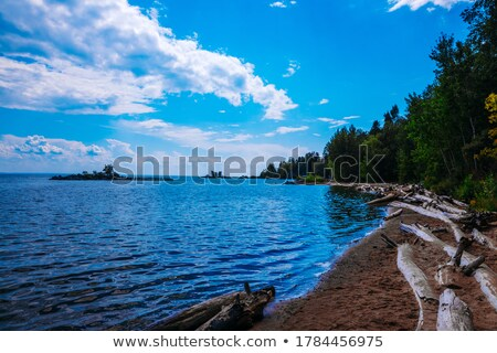 lago · silueta · hermosa · puesta · de · sol · árbol - foto stock © mackflix