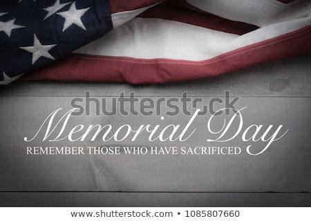 Köpek amerikan bayrağı odak sığ Stok fotoğraf © stevemc