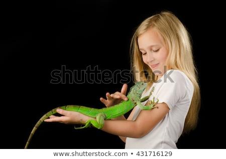 Iguana Kid Stock photo © lenm