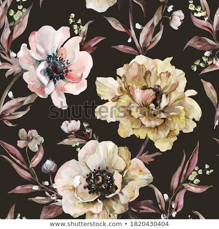 illustration of anemone stock photo © perysty