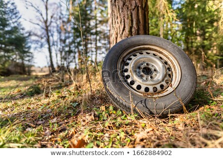 discarded tires stock photo © sumners