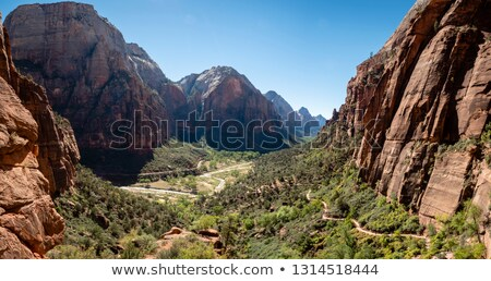 middle of zion national park stock photo © oliverjw