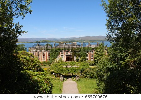Casa jardim cortiça Irlanda árvores viajar Foto stock © phbcz