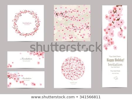 roze · kers · bloemen · helling · blad - stockfoto © norwayblue