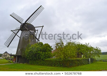 Traditioneel houten windmolen weelderig tuin vier Stockfoto © juniart