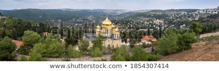 hermosa · francés · iglesia · típico · rojo · amarillo - foto stock © joningall
