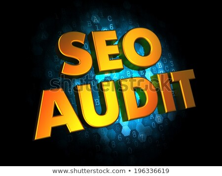 Seo Audit - Gold 3D Words. Stock photo © tashatuvango