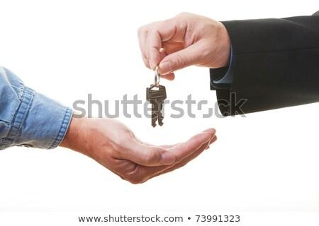 maschio · agente · immobiliare · miniatura · casa · Palm - foto d'archivio © sqback