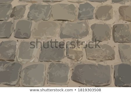 Cobble stone pavement texture Stock photo © stevanovicigor