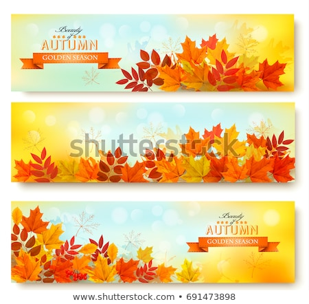 three colored autumn banners colored background stock photo © limbi007