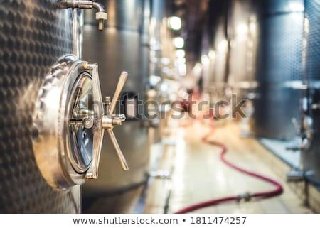 Roestvrij staal fermentatie wijn fabriek voedsel metaal Stockfoto © Discovod