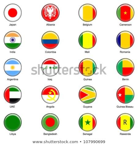 Egyesült Arab Emírségek Guyana zászlók puzzle izolált fehér Stock fotó © Istanbul2009