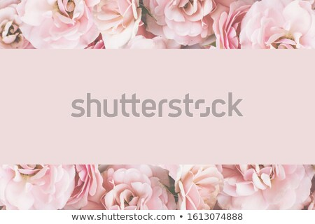 Bouquet rose blanche roses belle mur de briques Photo stock © manera