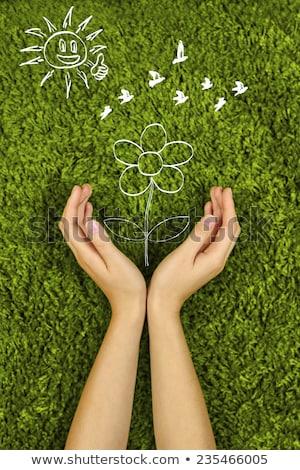 mão · proteção · assinar - foto stock © CebotariN