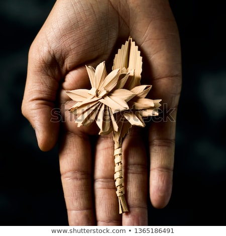 traditional spanish braided palm to be blessed on Palm Sunday Stock photo © nito
