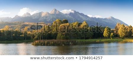 Montanhas inspirado inverno paisagem panorama belo Foto stock © blasbike
