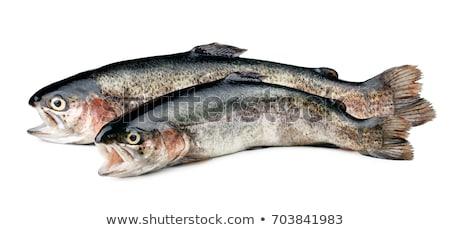 Deux fraîches truite alimentaire saumon Photo stock © Digifoodstock