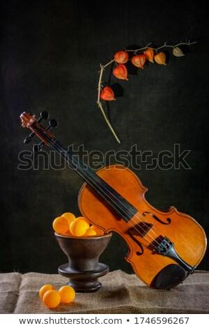 Csendélet hangszerek öreg zene fegyver csoport Stock fotó © user_9834712