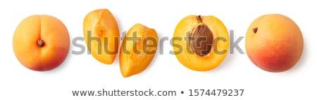 Albicocca bianco foglie isolato illustrazione frutta Foto d'archivio © ConceptCafe