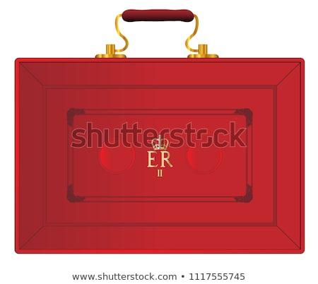 Rood geval illustratie witte zak huid Stockfoto © bluering