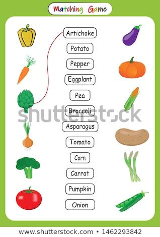 Dopasowywanie gry świeże warzywa ilustracja żywności farbują Zdjęcia stock © bluering
