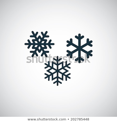 snowflake icon stock photo © lightsource