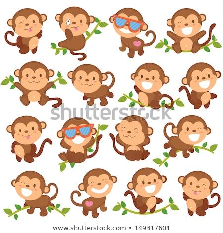 Cute обезьяны Cartoon Постоянный счастливым образование Сток-фото © jawa123