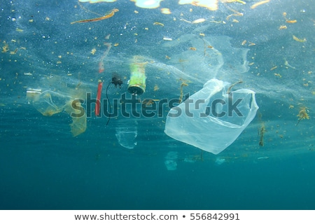 plastic rubbish pollution in ocean stock photo © michaklootwijk