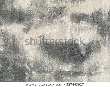 Durva grunge fal textúra beton szürke Stock fotó © stevanovicigor