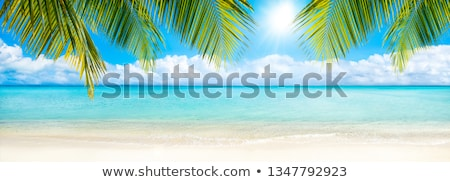 Strand panorama afbeelding tropische zomer landschap Stockfoto © ixstudio