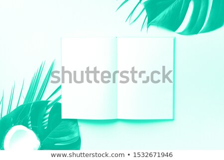 white blank space and green leaves over turquoise Stock photo © dolgachov