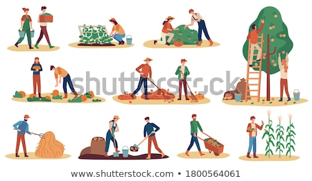 A woman and girl digging a garden Stock photo © IS2