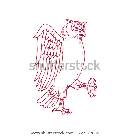 Great Horned Owl Marching Drawing Stock photo © patrimonio
