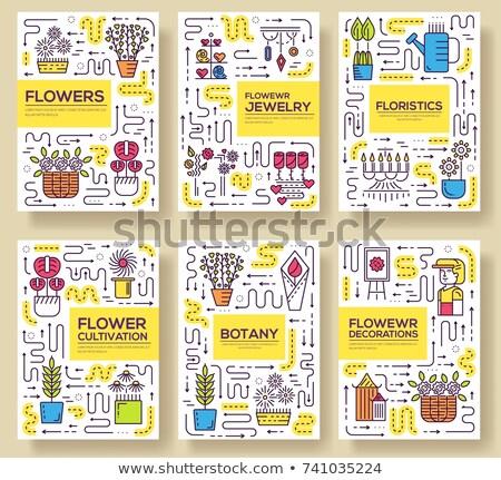 Stockfoto: Business · vector · brochure · kaarten · dun · lijn