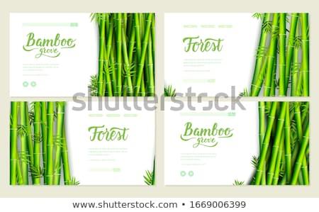 Foto stock: Bambu · decorativo · retro · cartão · convite · traçado
