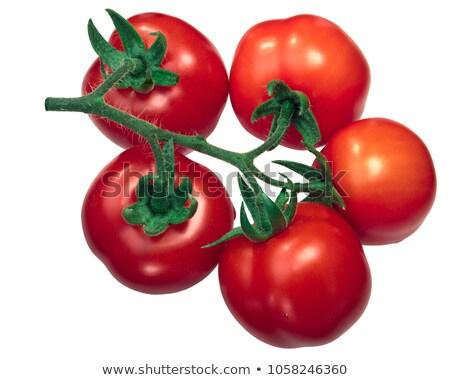 Regina tomatoes on the vine, paths Stock photo © maxsol7