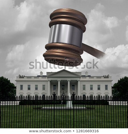White House Legal Trouble Stock photo © Lightsource