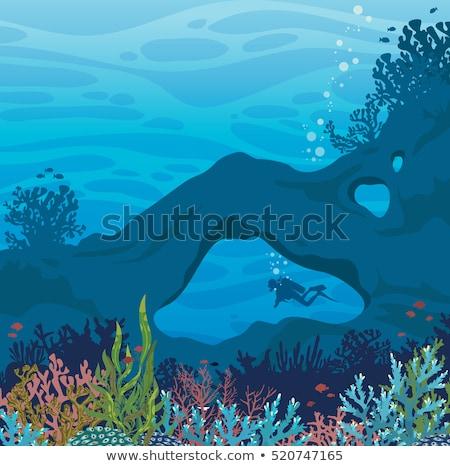 Сток-фото: подводного · сцена · коралловый · риф · пещере · иллюстрация · пляж