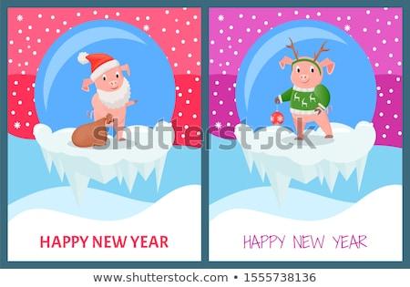 Boldog új évet disznó hordoz zsák ajándékok vektor Stock fotó © robuart