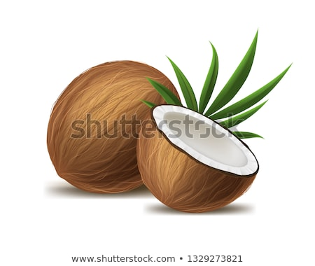 half · kokosnoot · illustratie · ontwerp · witte · computer - stockfoto © marysan
