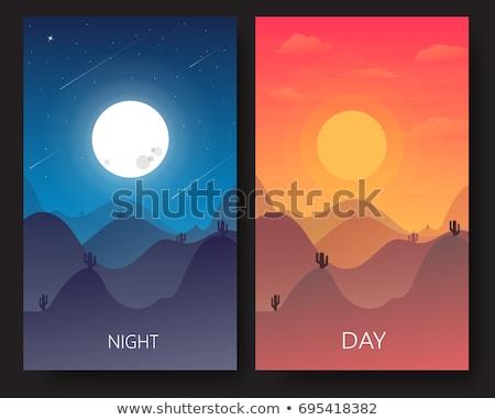 Cena noturna deserto ilustração céu paisagem projeto Foto stock © bluering