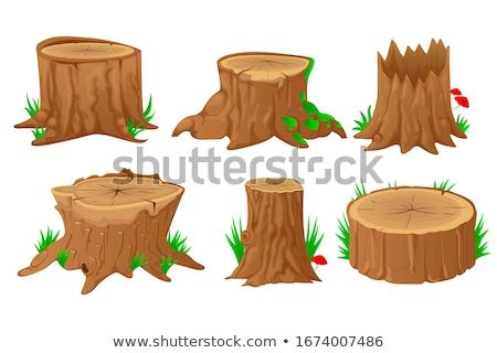 Drewno opałowe drzew ilustracja drzewo tle sztuki Zdjęcia stock © colematt