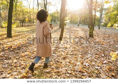 Hátulnézet fotó afrikai fiatal nő sétál kint Stock fotó © deandrobot
