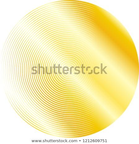 Gouden stijlvol nauwkeurig illustratie spiraal symbool Stockfoto © Blue_daemon