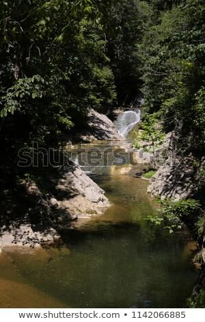 Luxuriante cachoeira desfiladeiro azul montanhas Foto stock © lovleah